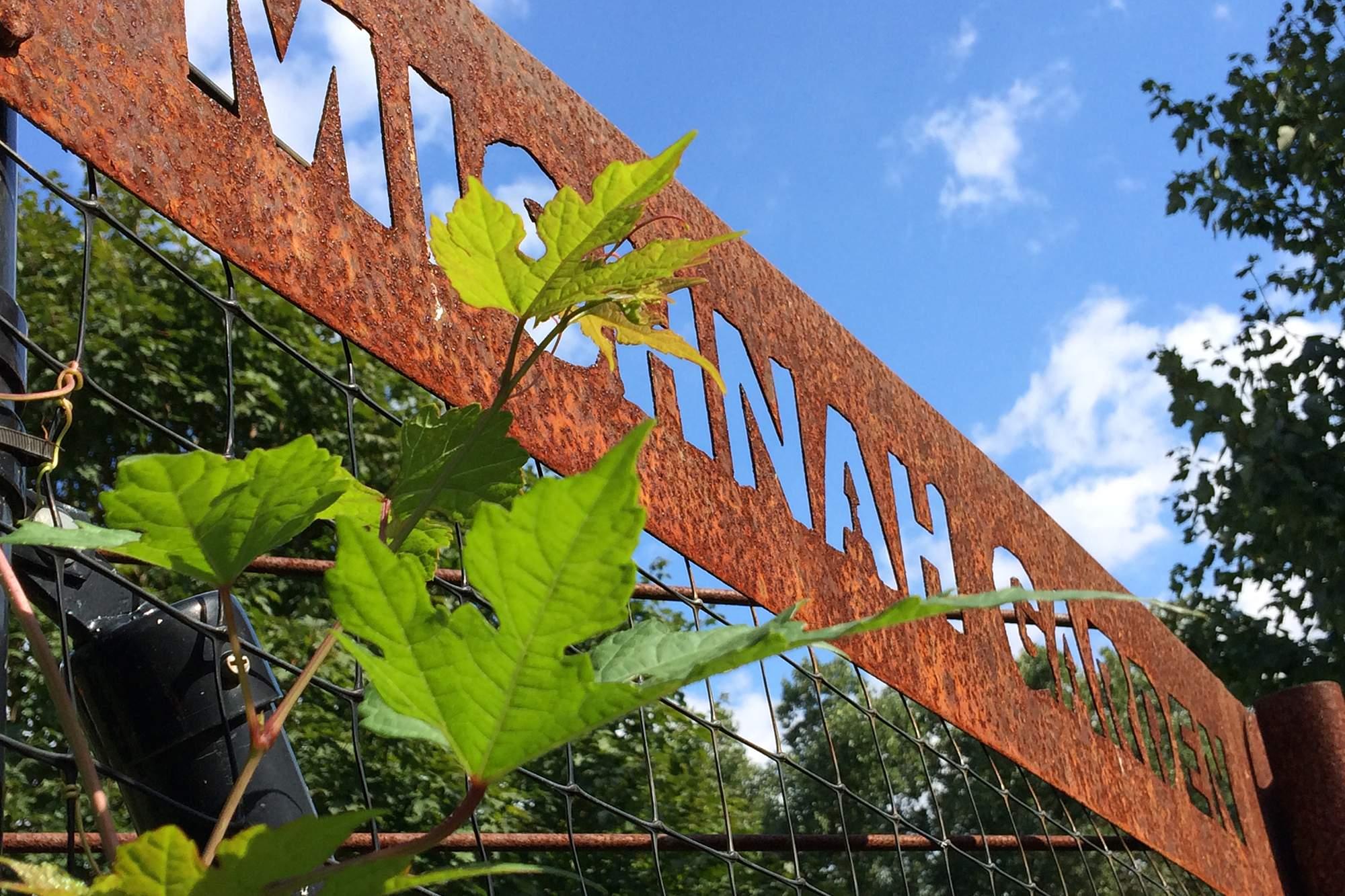 Mishnah Garden