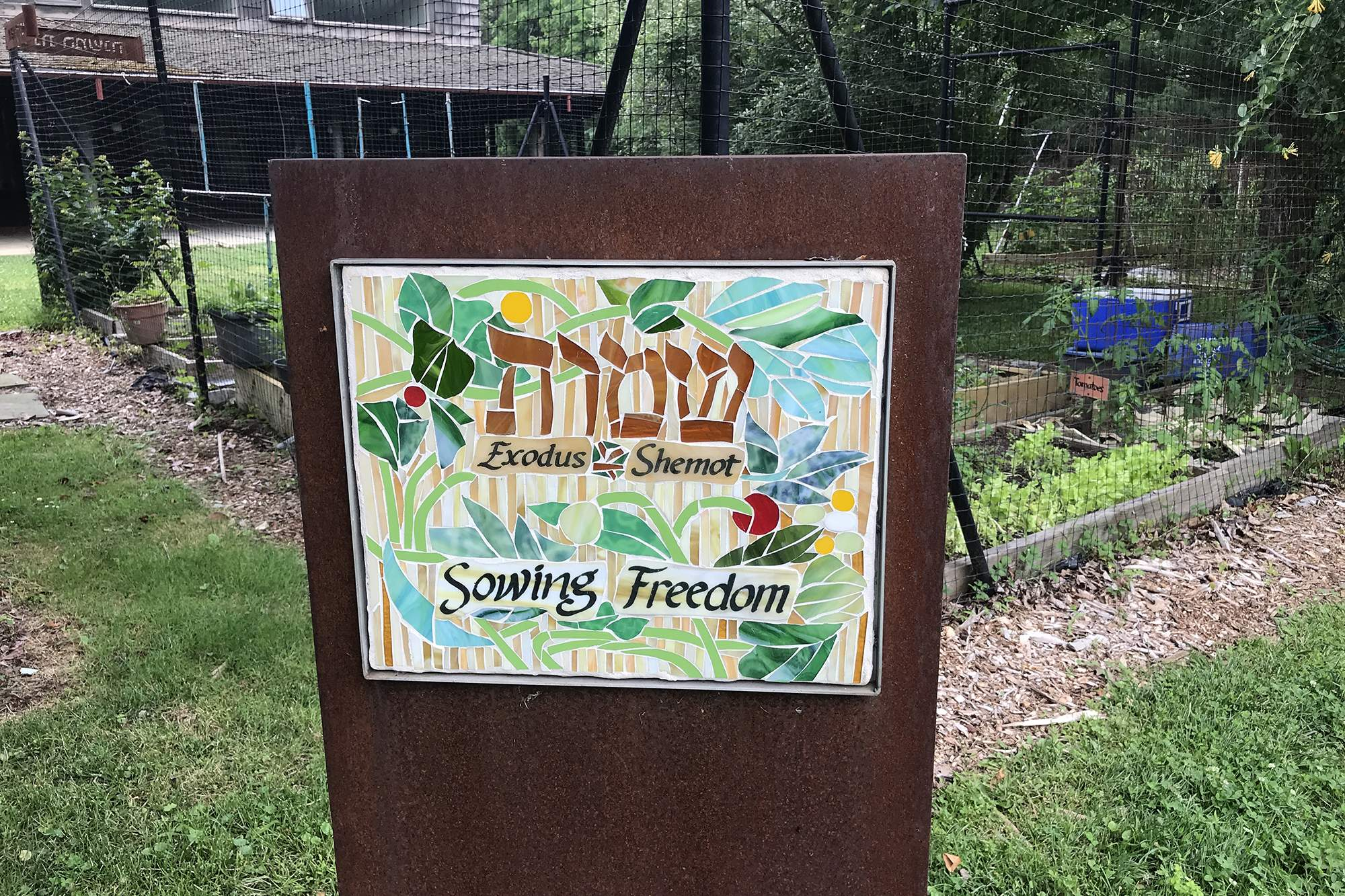 Green Tikkun/Environment