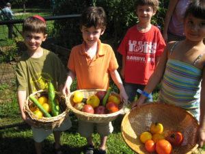 Mishna Garden Bounty